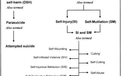 Coincidencia Significativa entre la Autoagresión no Suicida y los Intentos de Suicidio en Adolescentes – 2002